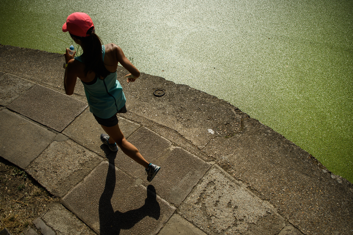 A jogger runs past the green coating on Regent's Canal following a huge increase in the amount of duck weed