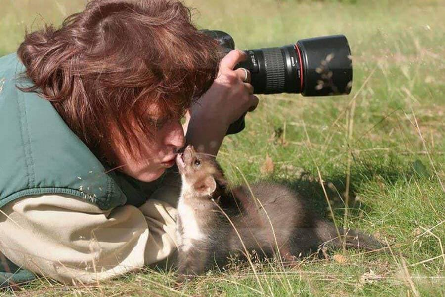 animal-biting-photographer-in-nose-23288