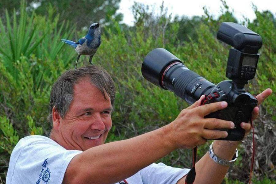 bird-on-photographers-head-88086