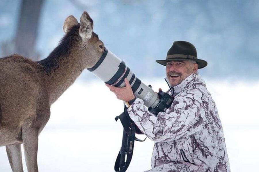 deer-looks-for-food-in-camera-61169