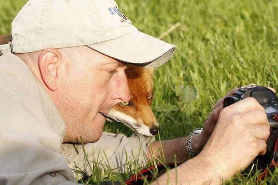 fox-checks-out-camera-31434