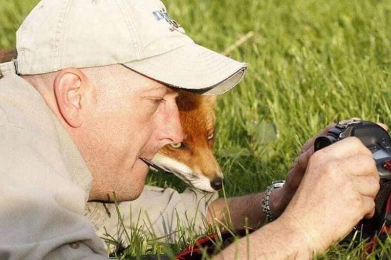 fox-checks-out-camera-31434-97564
