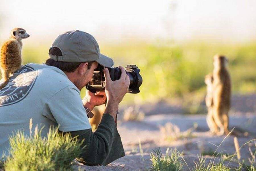 lemur-tells-friends-how-to-pose-for-photo-43416