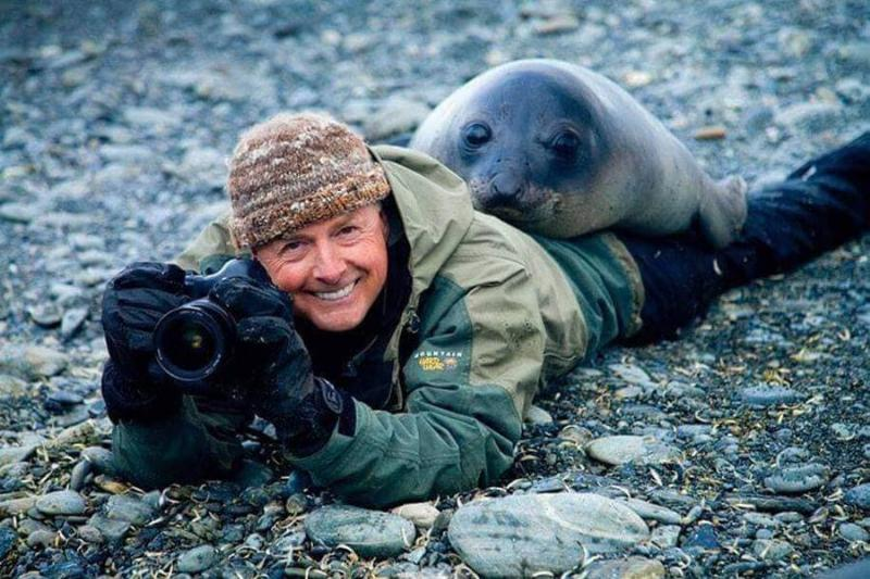 seal-doesnt-want-its-picture-taken-61936
