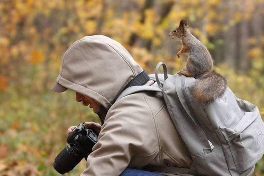 squirrel-help-take-photos-20989