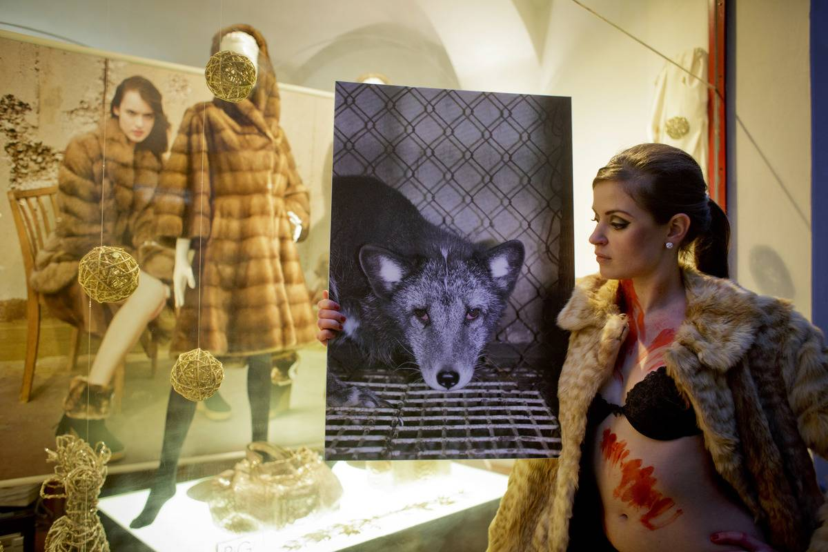 Protesters March On Fur Free Friday